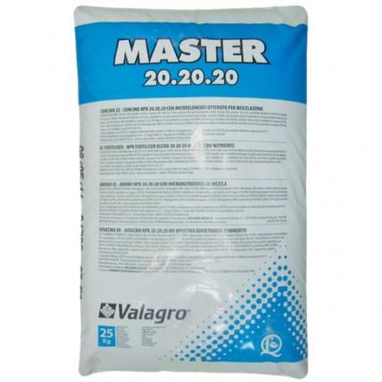 Мастер 20-20-20 ручная фасовка 100 гр